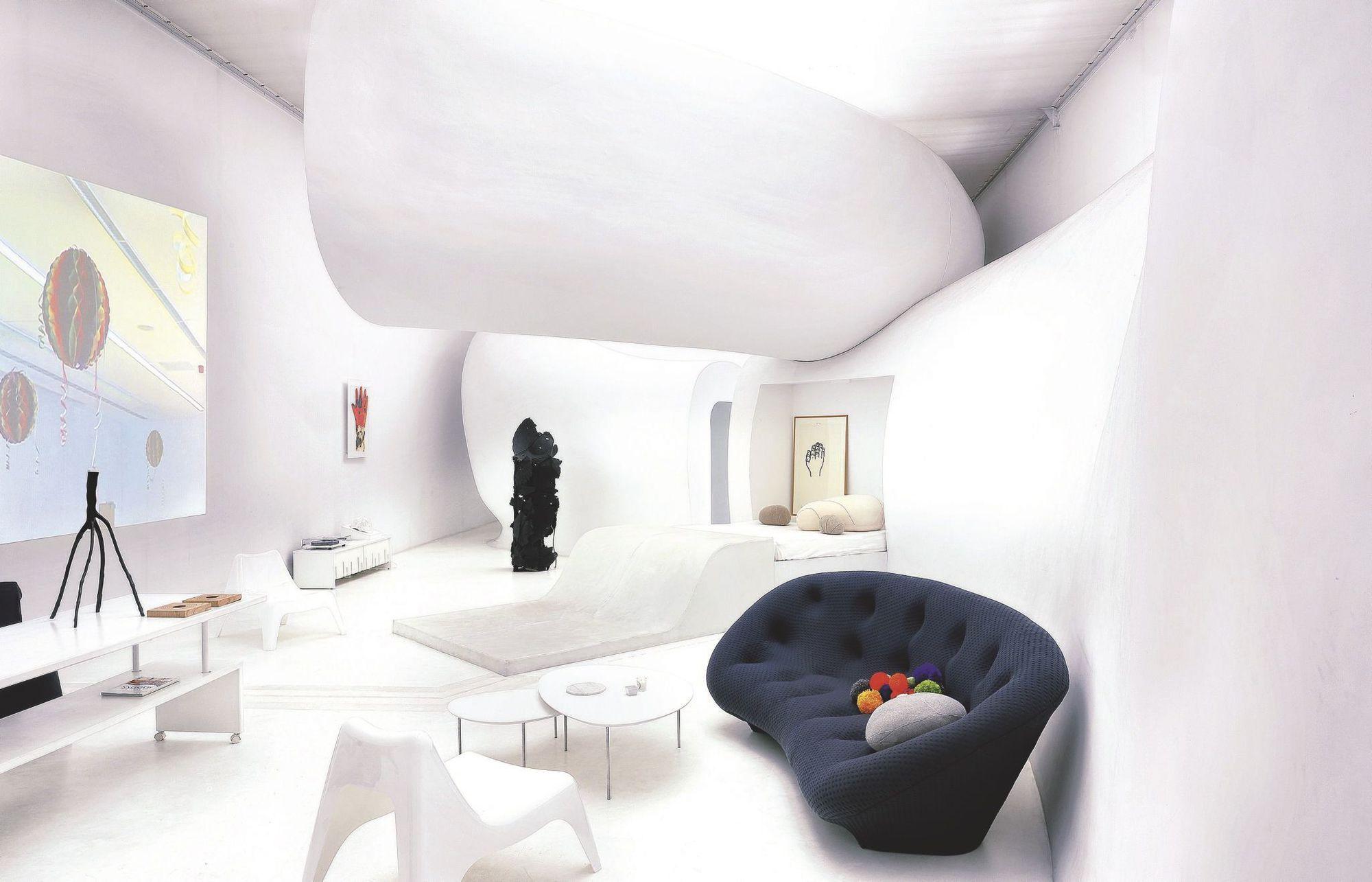 plus beaux lofts : François Roche, Le snake vue du salon