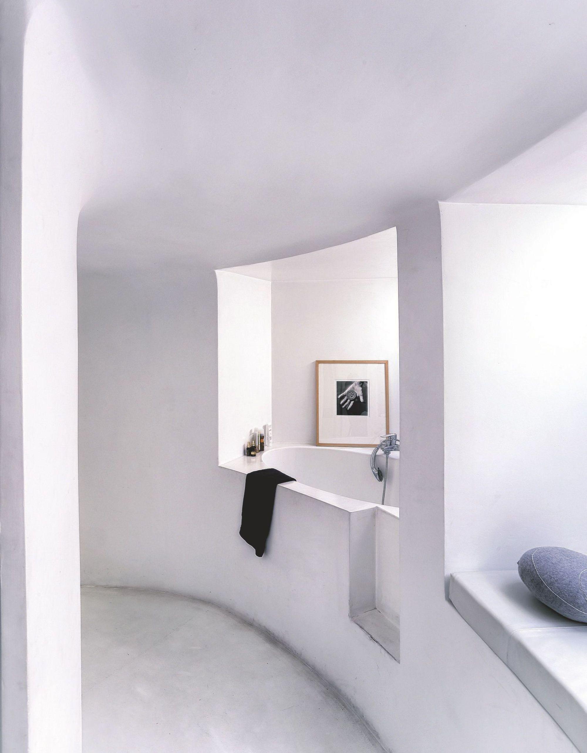 plus beaux lofts : François Roche, Le snake vue de la salle de bain